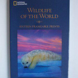 NATIONAL GEOGRAPHIC - Wildlife Prints (NWT)